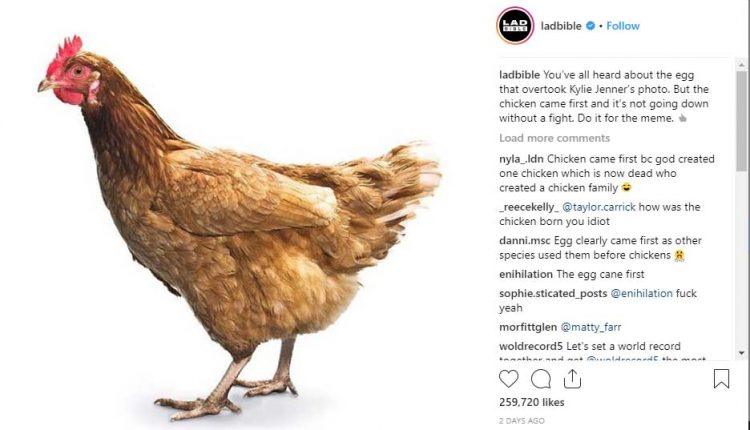 World Recod Egg in instagram